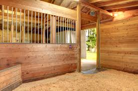 Good Barn Keeping Horses Healthier Through Good Barn Hygiene Morgan
