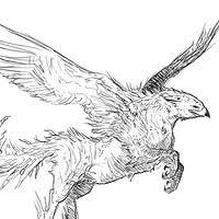 artstation creature sketch rat boar isobel izzy leidl wilson