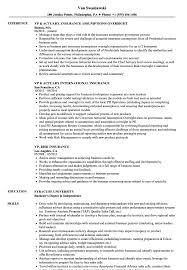 insurance resume exles vp insurance resume sles velvet