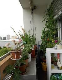 Small Balcony Garden Design Ideas Chic Green Nuance Of Small Balcony Garden Which Is Completed With