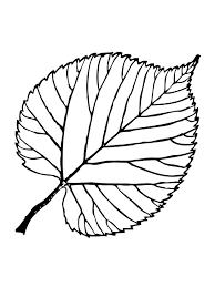 leaf coloring pages to print loving printable