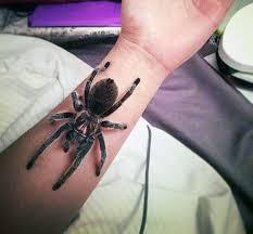 fabulous tarantula tattoo golfian com