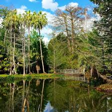 Mead Gardens Summer Camp - what to orlando mead botanical garden