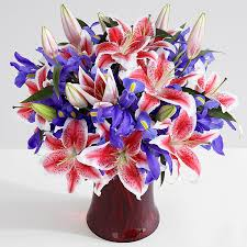 flower bouquet pictures premium s day spectacular