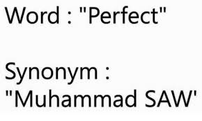 Meme Synonyms - word perfect synonym muhammad saw meme on sizzle