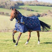 Outdoor Rugs For Horses Turnout Rugs From Ride Away