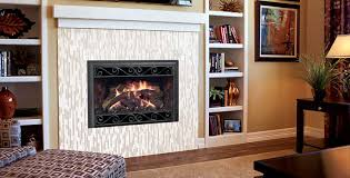 Fireplace Insert Screen by D Series Gas Fireplace Insert By Mendota Hearth