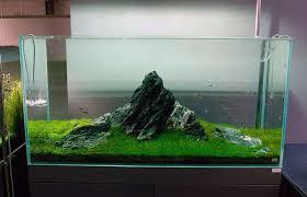 Home Aquarium Decorations Home Decor Ideas Cozy Seamount Aquarium Decorations Hardscape Design