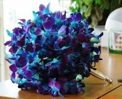 purple and blue wedding blue orchids weddings style and decor do it yourself