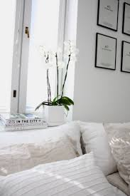 White Bedrooms Pinterest by Best 20 White Bedroom Decor Ideas On Pinterest White Bedroom