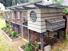 Backyard Beehive Keeping Bees With Chickens Coop Thoughts Blog