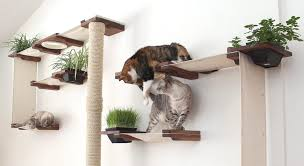 cat furniture 9 awesome cat trees you can get on amazon u2022 gabby the tabby