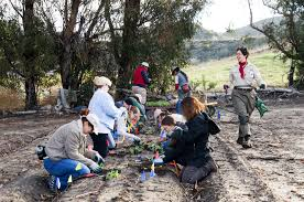 harvest seeds and native plants single day volunteer opportunities irvine ranch natural landmarks