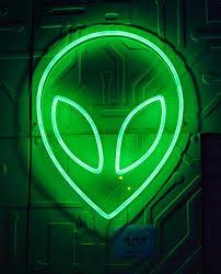 neon light cyberdog