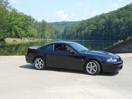 Pictures Of Black Mustangs Member U0027s Cars Hoosier Mustang Club Dave Sell