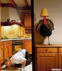 mocking words happy thanksgiving