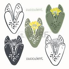 hand drawn vector illustrations set with succulents sketch