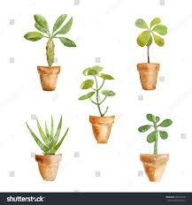 set watercolor potted plants design elements stock illustration