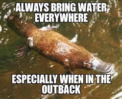 Platypus Meme - australian advice platypus weknowmemes generator