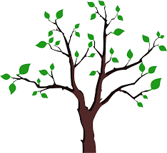 clipart sparse foliage tree