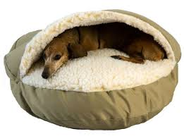 11 of the greatest dog beds in the history of dog beds the barkpost