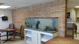 nursing home midlothian aquarium fish sanctuary