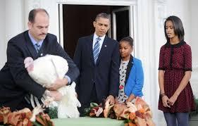 pardoned white house turkeys live horrible lives in inhumane