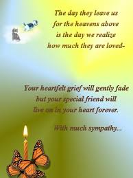 sympathy for loss of dog pet loss prayer dog loss quotes pet loss sympathy cards more cat