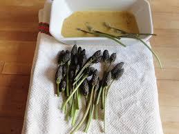 cuisine plantes sauvages comestibles a la rencontre des plantes sauvages comestibles clémentine la