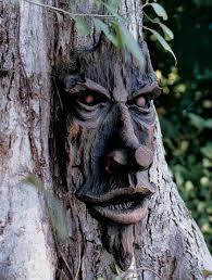 tree face tree faces friendly ent tree face gardener s supply