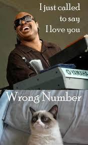 Stevie Wonder Memes - stevie wonder grumpy cat know your meme
