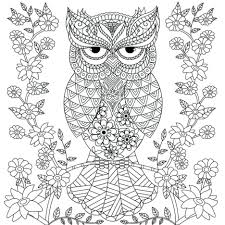 coloring adults owl design nature mandalas printable colouring