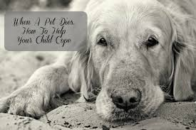 when a pet dies helping your child cope with the of a beloved pet before