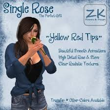 yellow roses with tips second marketplace zk single yellow tip with