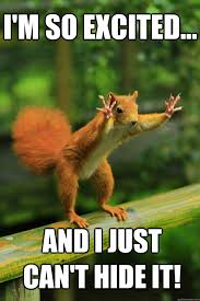Excited Memes - i m so excited and i just can t hide it red squirrel quickmeme