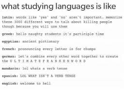 what studying languages is like latin words like yes and no aren