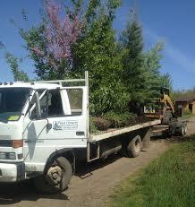 plant delivery plantndeliver truck jpg