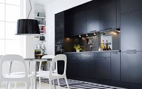 Affordable Modern Kitchen Cabinets Sorbo Kitchen Cabinetry Better Living Through Design