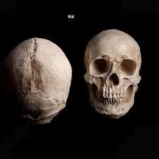 Halloween Skull Decorations Popular Scary Halloween Prop Buy Cheap Scary Halloween Prop Lots