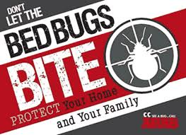Dont Let The Bed Bugs Bite Arab Pest Control