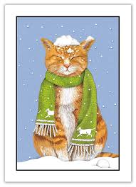 bottman cards tabby in snow sugarhouse greetings
