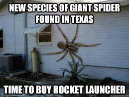 Huge Spider Memes Image Memes - nope time to buy a weapon shed with food to last for years my