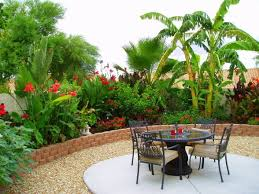 Backyard Pictures Best 25 Tropical Backyard Ideas On Pinterest Tropical Backyard