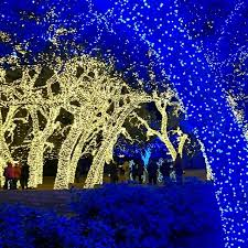 Christmas Lights Texas Best Places To See Holiday Lights In The Hill Country