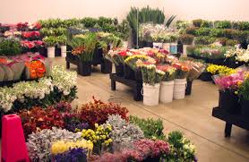 wholesale flowers top 10 flower wholesalers you should in california illinois