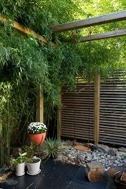Bamboo Backyard Bamboo Fencing Rolls Landscape Asian With Asian Bamboo Bamboo