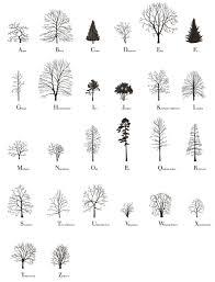 the tree alphabet