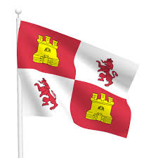 Lion Flag 3ft X 5ft Lions And Castles Flag Flags International