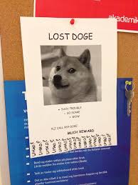 Lost Doge Meme - lost doge found at cus today 35a7a1 4902374 jpg
