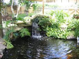 how to build backyard ponds u2014 luxury homes
